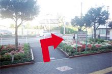 駅を背中にして、駅前広場花壇の中央を進み右折します。